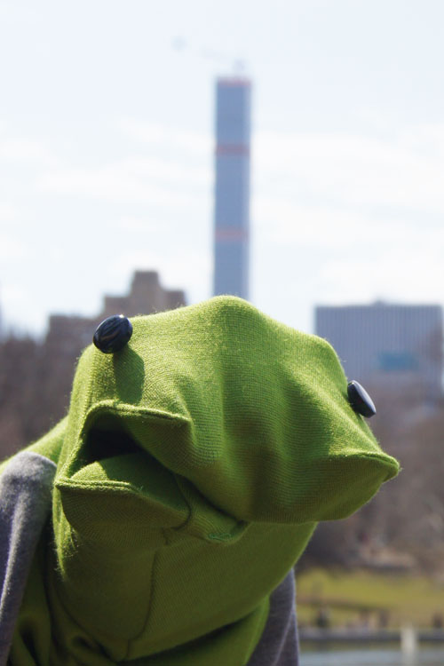 Froschi in New York